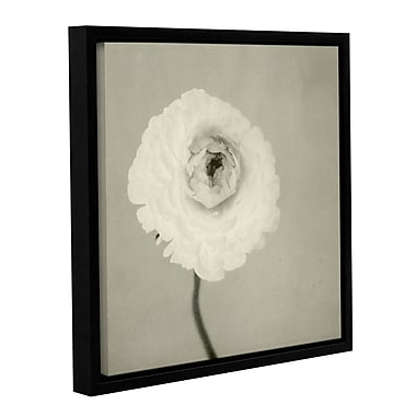 ArtWall Ranunculus by Elena Ray Framed Painting Print on Wrapped Canvas; 36'' H x 36'' W