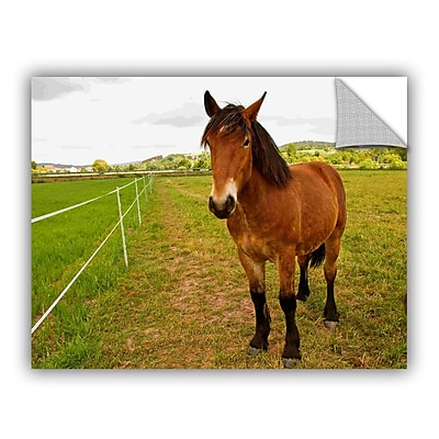 ArtWall Horse Painted Ii by Lindsey Janich Removable Photographic Print; 24'' H x 32'' W
