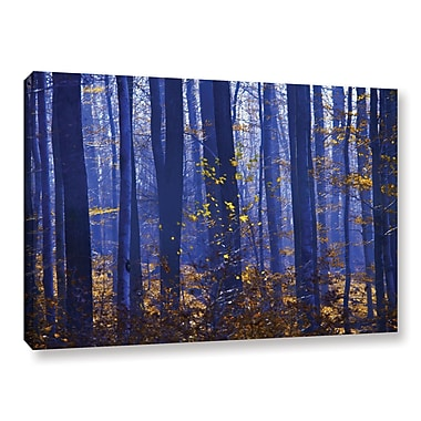 ArtWall Blue Forest by Lindsey Janich Photographic Print on Wrapped Canvas; 32'' H x 48'' W