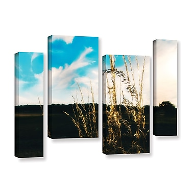 ArtWall Field by Revolver Ocelot 4 Piece Photographic Print on Wrapped Canvas Set; 36'' H x 54'' W