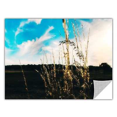 ArtWall Field by Revolver Ocelot Photographic Print; 16'' H x 24'' W