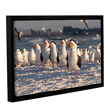 ArtWall Skimmers Siesta Key by Lindsey Janich Framed Photographic Print on Wrapped Canvas
