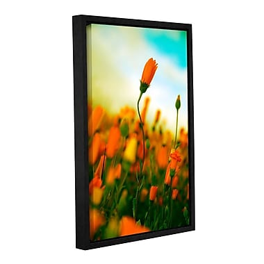 ArtWall African Daisy by Elena Ray Framed Photographic Print on Wrapped Canvas; 48'' H x 32'' W