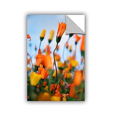 ArtWall African Daisy 2 by Elena Ray Photographic Print; 48'' H x 32'' W