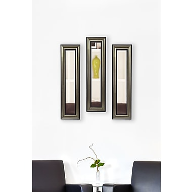 Rayne Mirrors Molly Dawn Rayne Antique Mirror Panels Set of 3; 9.5 X 21.5