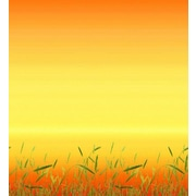 "Pacon® Fadeless® Design Paper, Prairie Grass, 48"" x 12'"