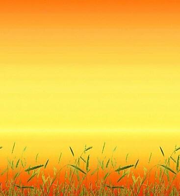 Pacon® Fadeless® Design Paper, Prairie Grass, 48
