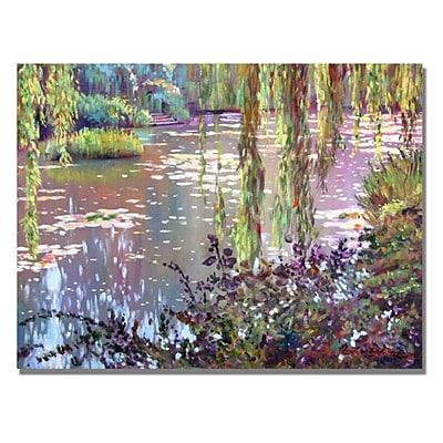 Trademark Fine Art 'Homage to Monet' 35