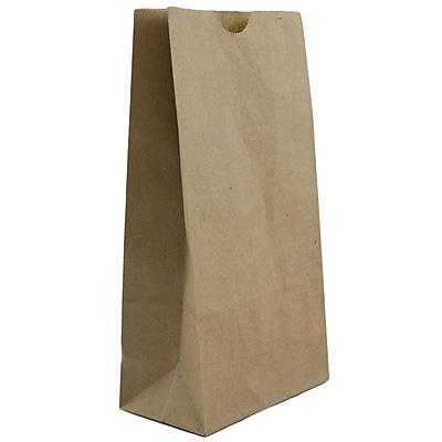 JAM Paper® Kraft Lunch Bags, Small, 4.125 x 8 x 2.25, Brown Kraft Recycled, 25/pack (690KRBR)