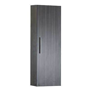 American Imaginations 12'' x 36'' Wall Mounted Cabinet; Brushed Nickel