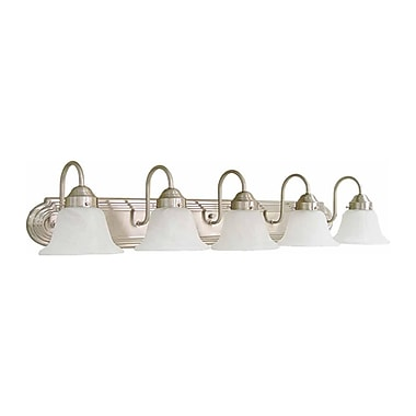 Aurora Lighting A19 Bath Vanity Lamp, Brushed Nickel(STL-VME013458)