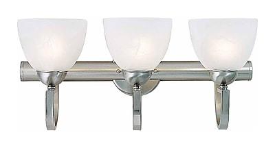 Aurora Lighting A19 Bath Vanity Lamp, Brushed Nickel(STL-VME372531)