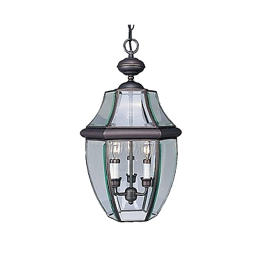 Aurora Lighting B11 Outdoor Pendant Lamp (STL-VME992876)