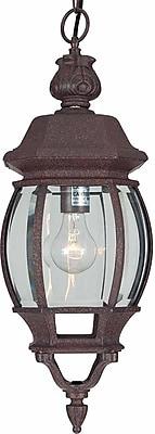 Aurora Lighting A19 Outdoor Pendant Lamp (STL-VME816879)