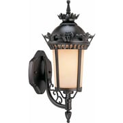 Aurora Lighting A19 Outdoor Wall Sconce Lamp (STL-VME587300)