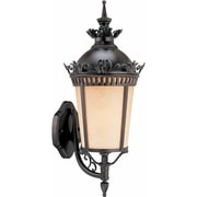 Aurora Lighting A19 Outdoor Wall Sconce Lamp (STL-VME587317)