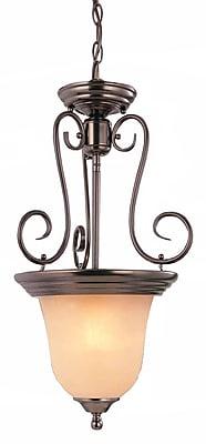 Aurora Lighting Incandescent Pendant, Antique Bronze (STL-VME923832)