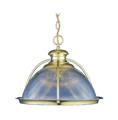 Aurora Lighting Incandescent Pendant, Polished Brass (STL-VME248010)