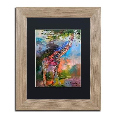 Trademark Fine Art ''Giraffe'' by Richard Wallich 11