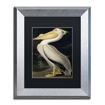 Trademark Fine Art ''American White Pelican'' by John James Audubon 11