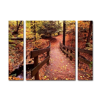 Trademark Fine Art ''Autumn Bridge'' by Kurt Shaffer 30