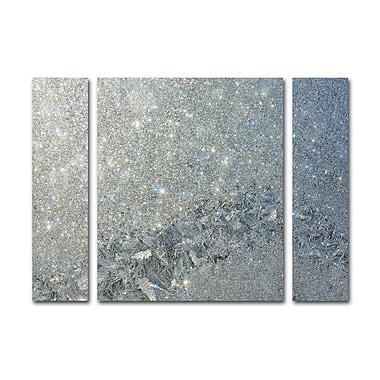 Trademark Fine Art ''Frost Pattern Sun Stars'' by Kurt Shaffer 30