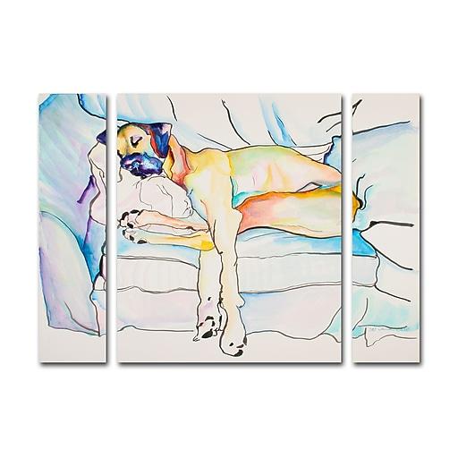 "Trademark Fine Art ''Sleeping Beauty'' by Pat Saunders 24"" x 32"" Multi Panel Art Set Small (886511923621)"