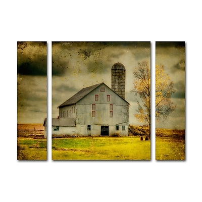 Trademark Fine Art ''Old Barn on Stormy Afternoon'' by Lois Bryan 24