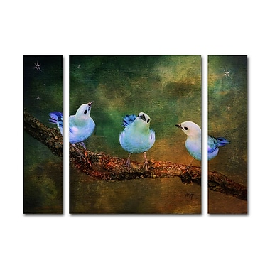 Trademark Fine Art ''Three Little Blue Birds'' by Lois Bryan 30