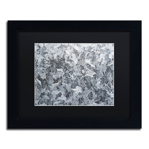 "Trademark Fine Art ''Frost Mosaic'' by Kurt Shaffer 11"" x 14"" Black Matted Black Frame (886511821545)"