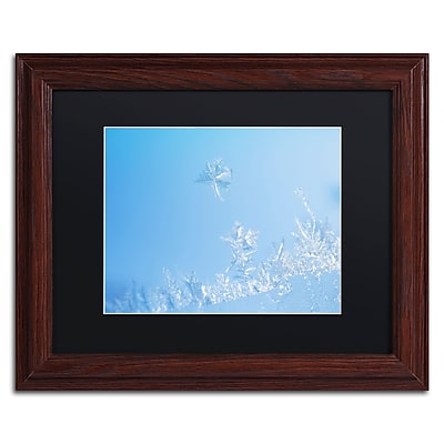Trademark Fine Art ''Window Frost'' by Kurt Shaffer 11