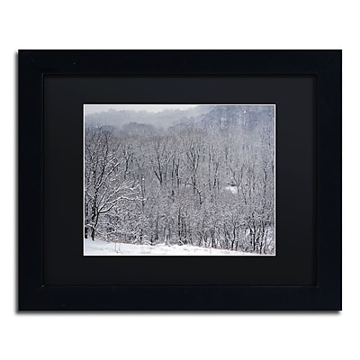 Trademark Fine Art ''Quiet Heavy Snowfall'' by Kurt Shaffer 11