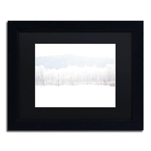 "Trademark Fine Art ''Abstract Winter Beaver Marsh'' by Kurt Shaffer 11"" x 14"" Black Matted Black Frame (886511822467)"