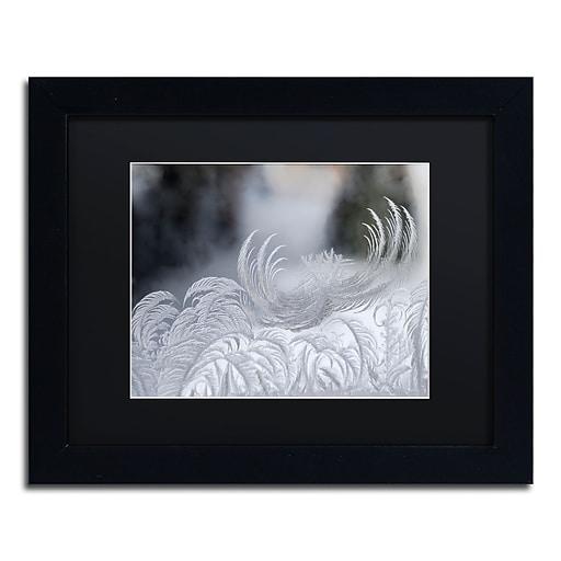 "Trademark Fine Art ''February Window Frost'' by Kurt Shaffer 11"" x 14"" Black Matted Black Frame (886511822528)"