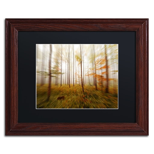 "Trademark Fine Art ''Autumn Go Fast'' by Philippe Sainte-Laudy 11"" x 14"" Black Matted Wood Frame (886511795846)"