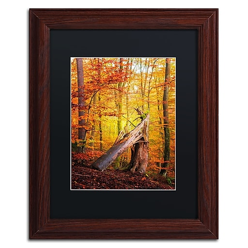 "Trademark Fine Art ''Broken Career'' by Philippe Sainte-Laudy 11"" x 14"" Black Matted Wood Frame (886511796249)"