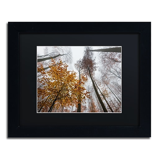 "Trademark Fine Art ''Daydreamer'' by Philippe Sainte-Laudy 11"" x 14"" Black Matted Black Frame (886511796362)"