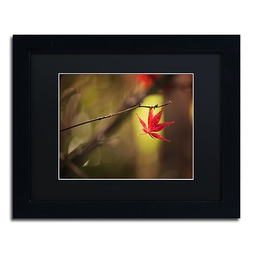 """Trademark Fine Art ''Don't Give Up'' by Philippe Sainte-Laudy 11"""" x 14"""" Black Matted Black Frame (886511796560)"""