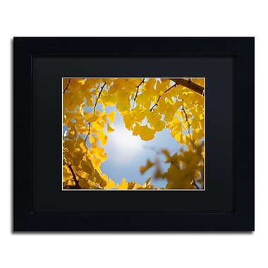 Trademark Fine Art ''Ginkgo Leaves in Autumn'' by Philippe Sainte-Laudy 11