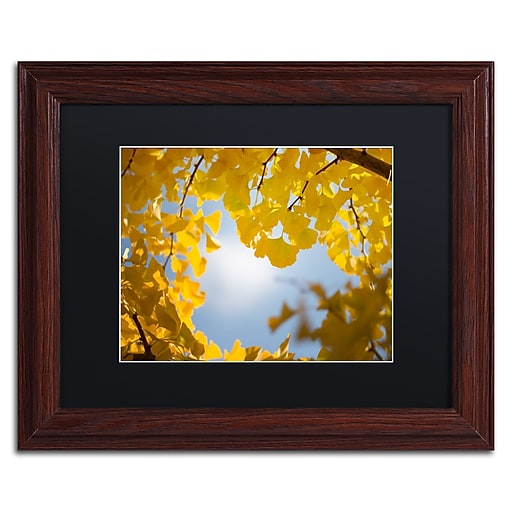 """Trademark Fine Art ''Ginkgo Leaves in Autumn'' by Philippe Sainte-Laudy 11"""" x 14"""" Black Matted Wood Frame (886511797147)"""