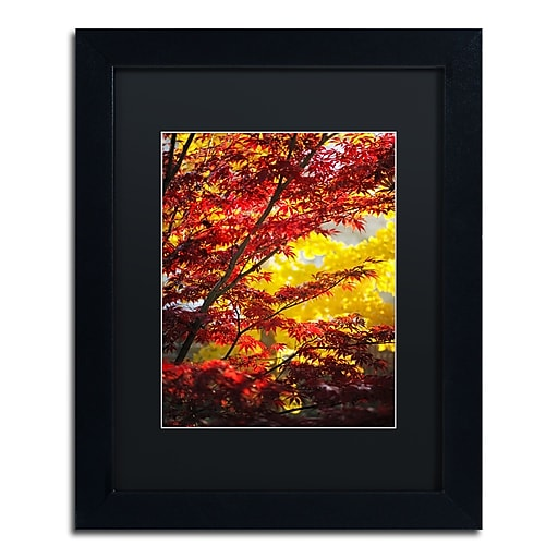 "Trademark Fine Art ''I Believe'' by Philippe Sainte-Laudy 11"" x 14"" Black Matted Black Frame (886511797369)"