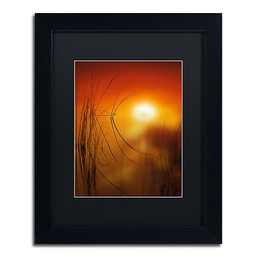 "Trademark Fine Art ''Nature Time Machine'' by Philippe Sainte-Laudy 11"" x 14"" Black Matted Black Frame (886511797864)"