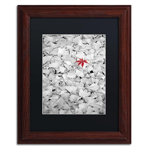 "Trademark Fine Art ''Rebel Leaf'' by Philippe Sainte-Laudy 11"" x 14"" Black Matted Wood Frame (886511798243)"