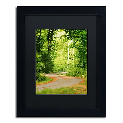 "Trademark Fine Art ''S Road'' by Philippe Sainte-Laudy 11"" x 14"" Black Matted Black Frame (886511798564)"