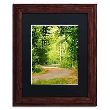 Trademark Fine Art ''S Road'' by Philippe Sainte-Laudy 11
