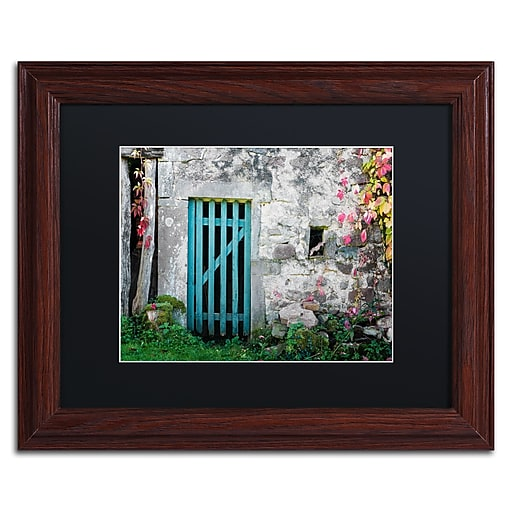 """Trademark Fine Art ''The Old Wooden Door'' by Philippe Sainte-Laudy 11"""" x 14"""" Black Matted Wood Frame (886511799448)"""