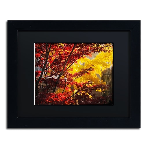 """Trademark Fine Art ''Transits'' by Philippe Sainte-Laudy 11"""" x 14"""" Black Matted Black Frame (886511799660)"""