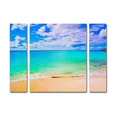 Trademark Fine Art ''Maho Beach'' by Preston 30
