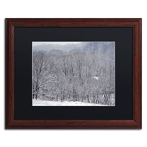 """Trademark Fine Art ''Quiet Heavy Snowfall'' by Kurt Shaffer 16"""" x 20"""" Black Matted Wood Frame (886511822313)"""
