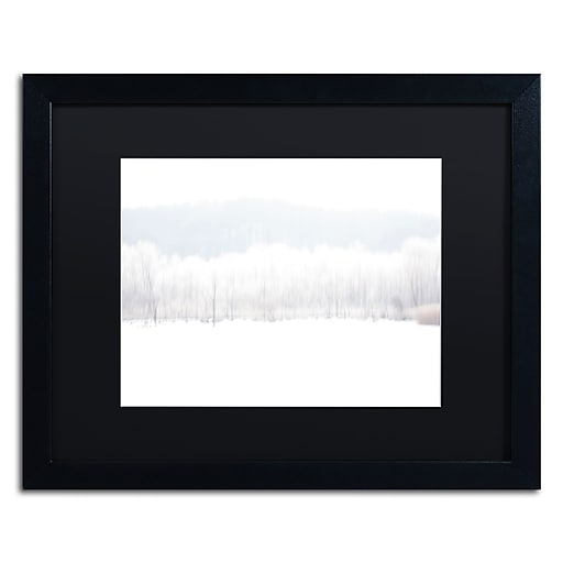 "Trademark Fine Art ''Abstract Winter Beaver Marsh'' by Kurt Shaffer 16"" x 20"" Black Matted Black Frame (886511822474)"